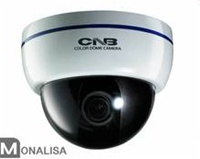 DBM-24VF CNB Dome camera -600 TVL with 2.8-10mm Lens